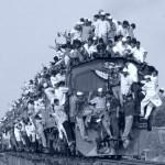vivail treno