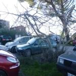 parcheggio fuori porta lavinia